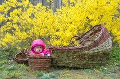 Behandla som ett barn i korgFN trädgården royaltyfri fotografi