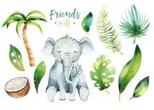 Behandla som ett barn isolerade illustrationen för djur barnkammaren för barn Tropisk teckning för vattenfärgboho, gullig vändkre Royaltyfri Fotografi
