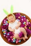 behandla som ett barn kaninen easter Arkivbild