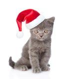 Behandla som ett barn kattungen i julhatten som ser kameran Isolerat på whi Royaltyfri Foto