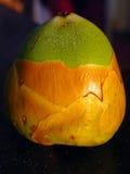 Behandla som ett barn kokosnöten Royaltyfri Bild