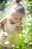 Behandla som ett barn lite flickan med tusenskönan i hennes hand Royaltyfria Bilder
