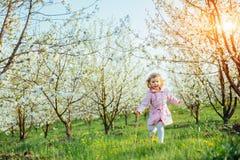 Behandla som ett barn lite flickan som kör mellan blomningträd på solnedgången Ar Arkivfoton