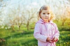 Behandla som ett barn lite flickan som kör mellan blomningträd på solnedgången Ar Royaltyfria Bilder