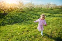 Behandla som ett barn lite flickan som kör mellan blomningträd på solnedgången Ar Royaltyfri Bild