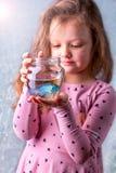 Behandla som ett barn lite flickan som rymmer en fishbowl med en blå fisk Omsorgconce Arkivfoto