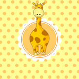 Behandla som ett barn lite giraffet Arkivbilder