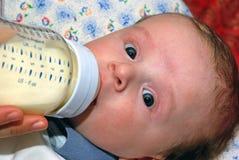 behandla som ett barn matning Fotografering för Bildbyråer