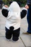 Behandla som ett barn med Panda Clothe Royaltyfria Bilder