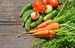 Behandla som ett barn morötter och nya gurkor för gräsplaner och tomater och lökar Fotografering för Bildbyråer