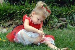 behandla som ett barn nyckelpigan Royaltyfri Foto
