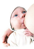 behandla som ett barn nyfödd amning Royaltyfri Bild