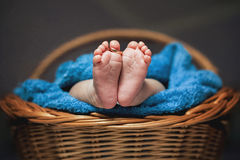 behandla som ett barn nyfött Fot son i en korg Barnet ligger i en korg med en blå handduk royaltyfri bild