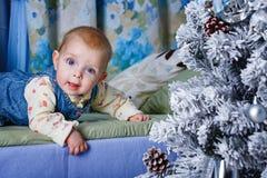 Behandla som ett barn och julgranen royaltyfri foto