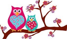 behandla som ett barn owls för blomningfilialmodern Arkivfoton