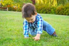 Behandla som ett barn på gräs Arkivbilder