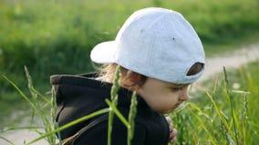 Behandla som ett barn pojkeanseendet med maskrosen i ett grönt fält i sommar arkivfilmer