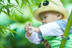 Behandla som ett barn pojkelek i bambuskog royaltyfria bilder