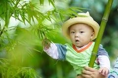 Behandla som ett barn pojkelek i bambuskog royaltyfri fotografi