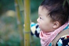 Behandla som ett barn pojken i bambuskog royaltyfri bild