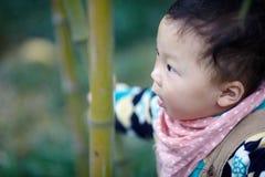 Behandla som ett barn pojken i bambuskog arkivfoton