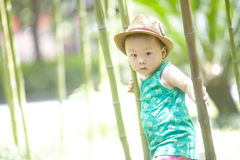 Behandla som ett barn pojken i sommar royaltyfria foton