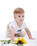Behandla som ett barn pojken och solrosen Arkivbilder