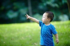 Behandla som ett barn pojken på gräs royaltyfria foton