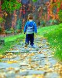 Behandla som ett barn pojken som bort går höstbanan Royaltyfri Bild