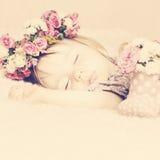 Behandla som ett barn sött lite flickan som sover i rosa Rose Flowers Tonade Vint Royaltyfri Foto