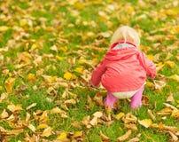 Behandla som ett barn samla fallna leaves. Bakre sikt Arkivfoton