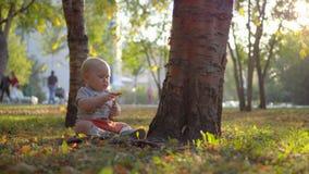 Behandla som ett barn sammanträde på gräsmattan nära trädet och att spela med gräs Solnedgången tänder Hösten parkerar lager videofilmer