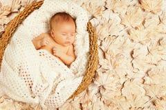 Behandla som ett barn sömn Autumn Leaves, den nyfödda ungen, nyfött sovande Royaltyfri Bild