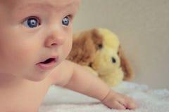 behandla som ett barn stora blåa ögon Royaltyfria Bilder