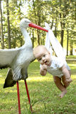 behandla som ett barn storken Arkivbild