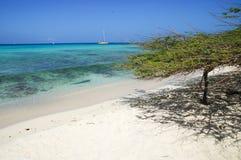 Behandla som ett barn stranden - Aruba Arkivfoto