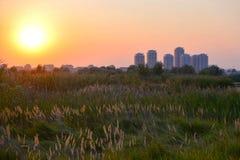 behandlad plats skjuten solnedgång för exponeringshdr long Arkivfoton