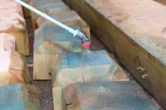 Behandling för plågakontroll av trä Arkivfoton