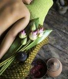 Behandling för skönhet för asiatisk massagebrunnsort naturlig organisk Arkivbild