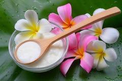 Behandlingar för brunnsort för yoghurt för framsidamaskering naturliga för hud royaltyfri foto
