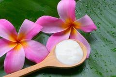 Behandlingar för brunnsort för yoghurt för framsidamaskering naturliga för hud arkivfoton