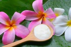 Behandlingar för brunnsort för yoghurt för framsidamaskering naturliga för hud royaltyfria foton