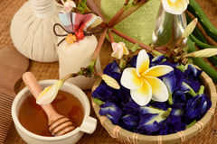 Behandlinghårbrunnsort med aloe vera, fjärilsärtan, kokosnötolja och honung Arkivbilder