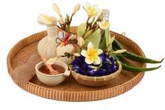 Behandlungshaarbadekurort mit Aloe Vera, Schmetterlingserbse, Kokosnussöl und Honig Lizenzfreie Stockbilder