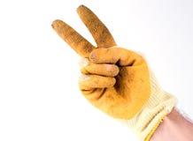 Behandschuhte Hand Stockfoto