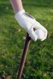 Behandschuhte Hand, die einen Golfclub anhält Stockbilder