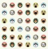 Behang met huisdieren van verschillende rassen Stock Foto