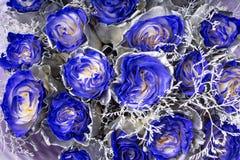 Behangachtergrond van blauwe rozen stock fotografie
