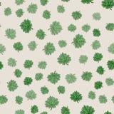 Beheerst naadloos bloemenpatroon Royalty-vrije Stock Foto
