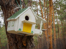 Behelfsmäßige Häuser für die Vögel im Park Lizenzfreies Stockfoto